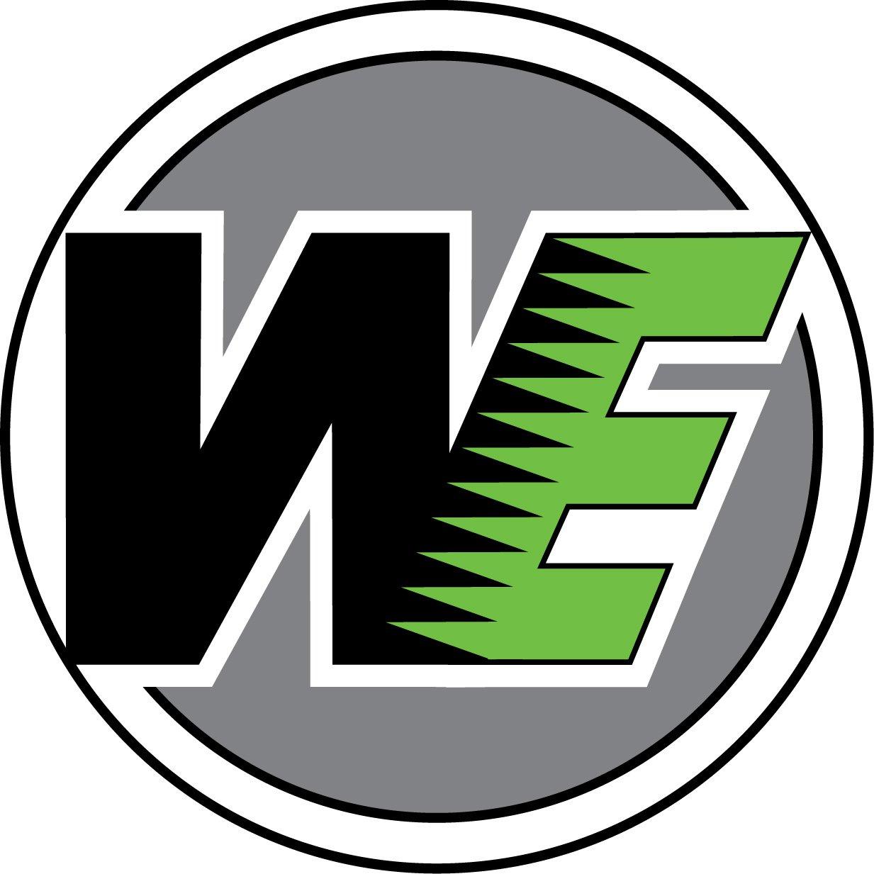 """Résultat de recherche d'images pour """"WE airsoft logo"""""""